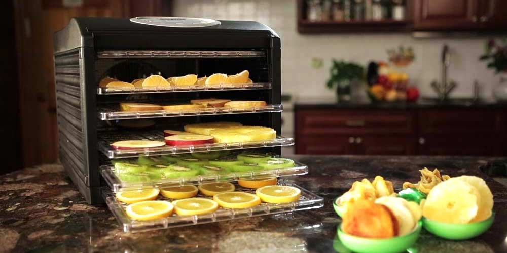 Food Dehydrator Buyer's Guide